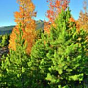 Fall Comes To Dillon Colorado Poster