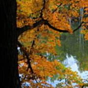 Fall Day At The Lake Poster