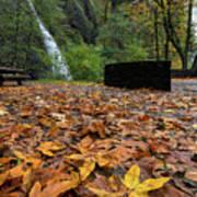 Fall Foliage At Horsetail Falls Poster