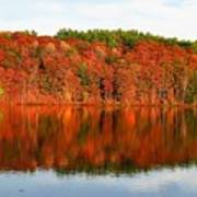 Fall Foliage Reflection Kennebec River Hallowell Poster