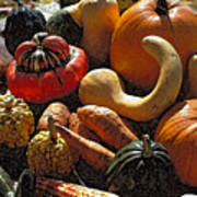 Fall Fruit And Vegetables  Poster