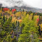 Fall In Baxter State Park Maine Poster