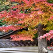 Fall In Japan Poster