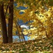 Fall In Kaloya Park 3 Poster