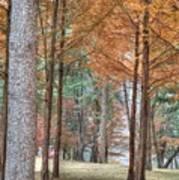 Fall In Korea Poster