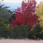 Fall In Santa Fe Poster