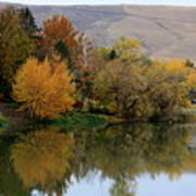 Fall Reflection Below The Hills In Prosser Poster