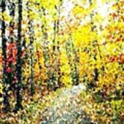Fallen Leaves Of Autumn Poster