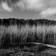 Fallen Timbers Battlefield Poster