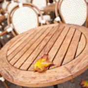 Fallen Yellow Autumn Leaf Poster