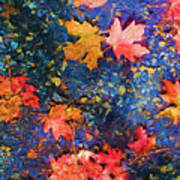 Falling Blue Leave Poster by Marilyn Sholin