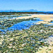False Bay Low Tide Poster by Jan Hattingh