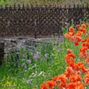 Fancy Foot Bridge And Poppies Poster by Stephanie Calhoun