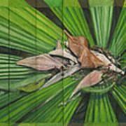 Fantail Palm Plateau Poster