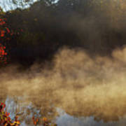 Fantastic Foggy River With Fresh Green Grass In The Sunlight. Poster