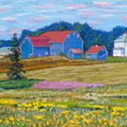 Farm On Prince Edward Island Poster
