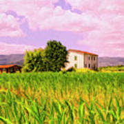 Farmhouse In Tuscany Poster
