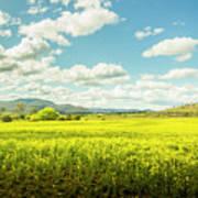 Farmland Colour Poster