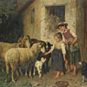 Feeding The Sheep Poster