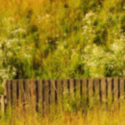 Fence And Hillside Of Wildflowers On Suomenlinna Island In Finland Poster