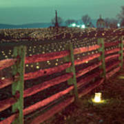 Fence And Luminaries 11 Poster