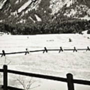 Fence Lines And Flatirons Poster
