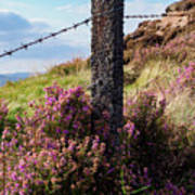 Fence Post In The Peak District Poster