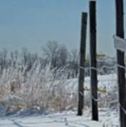 Fence Posts In Ice Poster