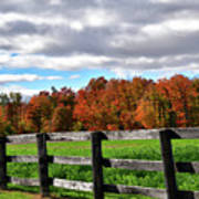 Fences, Fields And Foliage Poster