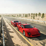 Ferrari F40 And F50 Poster