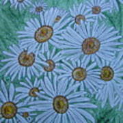 Field Of Wild Daisies Poster