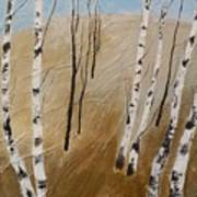 Field With Birches Poster