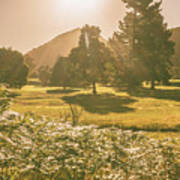 Fields Of Springtime Poster
