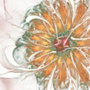 Fiery Chrysanthemum Poster