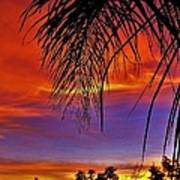 Fiery Sunset With Palm Tree Poster