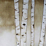 Fifteen Birch Trees Poster