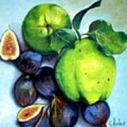 Figs And Quinces Poster
