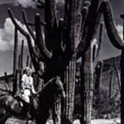 Film Homage Jean Harlow Bombshell 1933 Saguaro National Monument Tucson  Arizona  Duo-tone 2008 Poster