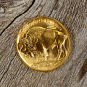 Fine Gold Buffalo Coin On Rustic Wooden Background Poster