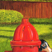 Fire Hydrant Dog Poster