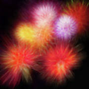 Fire Mums Floral - Fireworks Collage Poster