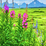 Fireweed In The Foreground 2 Poster