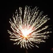 Firework White Fluff Poster