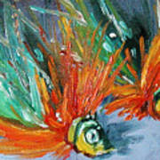 Fish Lures Poster