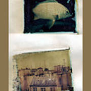Fish Over Paris Poster