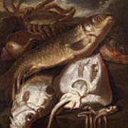 Fish Still Life Poster