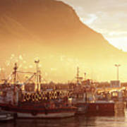 Fishing Boats At Dawn Kalk Bay South Africa Poster