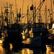Fishing Boats Sunset Light Poster