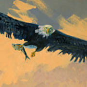 Fishing Eagle Poster by Donald Maier