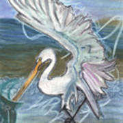 Fishing Egret Poster